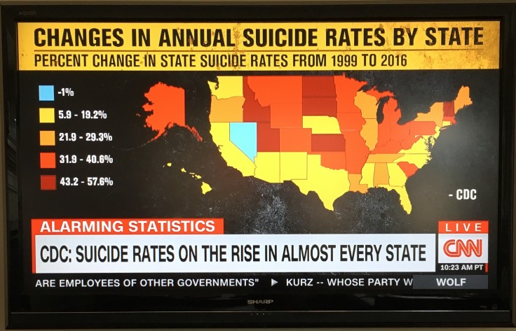 Suicide rates USA